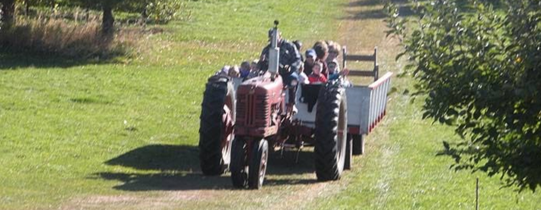 Hay Ride Apple Orchard